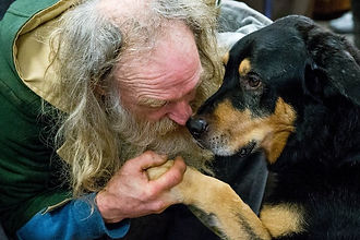 homeless_dogs_unconditional_love.jpg