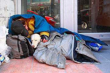 homeless_sleeping_bag_dog.jpg