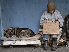 Pets Help Homeless People Cope