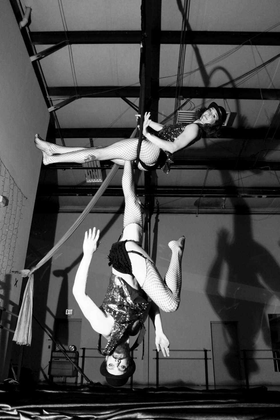 Adult Classes and Private Lessons in Aerial Circus and Fitness