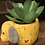 Thumbnail: Yellow Dog Faux Succulent planter