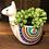 Thumbnail: Colorful Llama Faux Succulent Planter