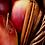 Thumbnail: Apple Cinnamon 12oz.