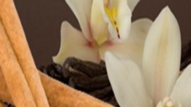 Cinnamon Vanilla 24oz.