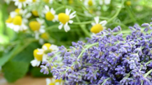 Lavender Chamomile 24oz.