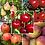 Thumbnail: Warm Apple Crisp/Apple Orchard Pear a'dise