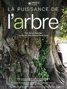 PUISSANCE DE L'ARBRE.jpg