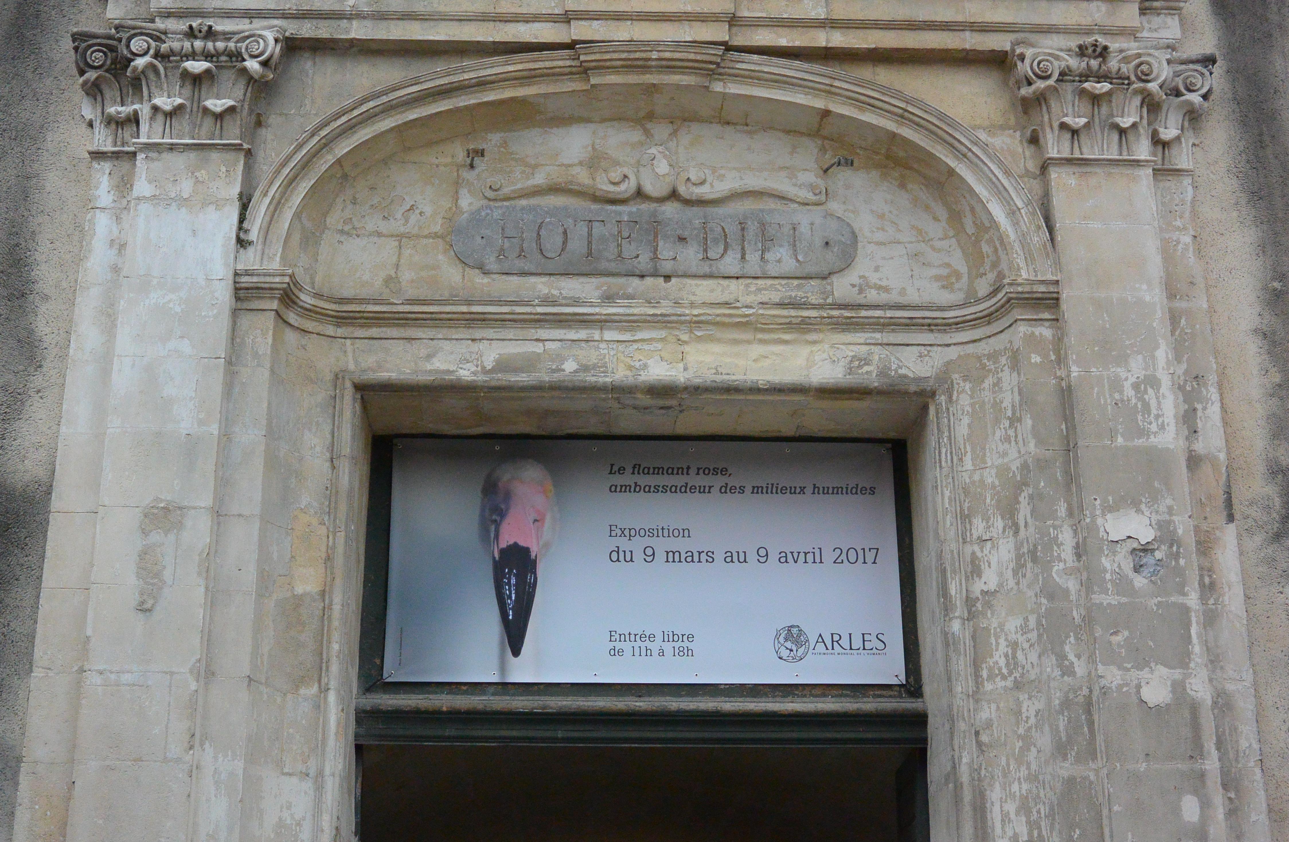 Espace Van Gogh à Arles