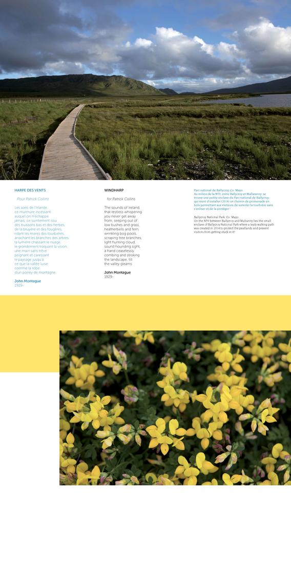DEF- IRLANDE DES POETES light_Page_18.pn