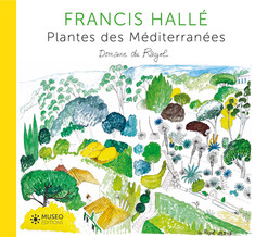 Plante des Méditerranées Domaine du Rayol