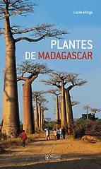 17-0822_madagascar_Cover_new.jpg