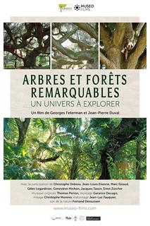 AFFICHE ARBRES REM_2_200209-vignette web