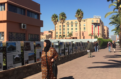 COP 22 de Marrakech