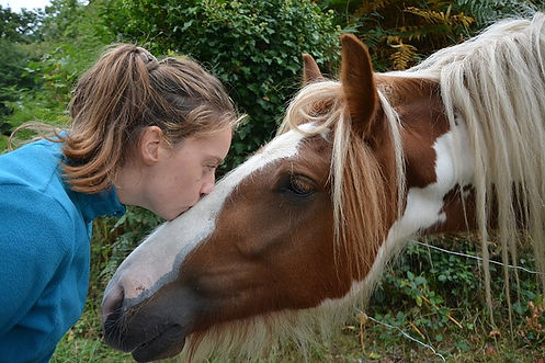 Relation homme-cheval