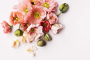 400-cropped-MStyled-Stock-Photography_Po