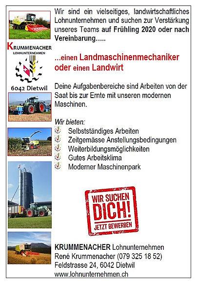 Stelleninserat_Frühling_2020.jpg