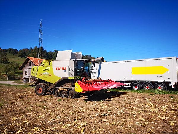 Claas Lexion 670 TerraTrac mit Maispflücker Capello R8