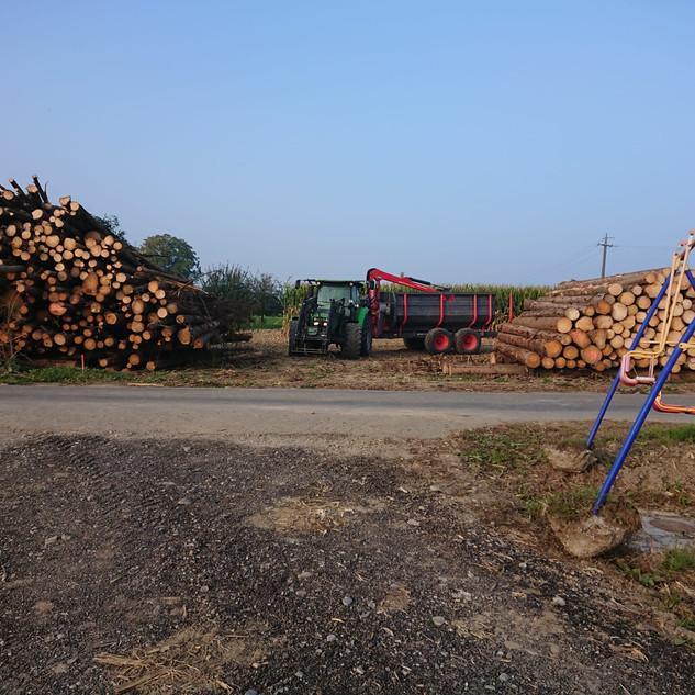 Holzanhänger mit Deutz Agrotron K