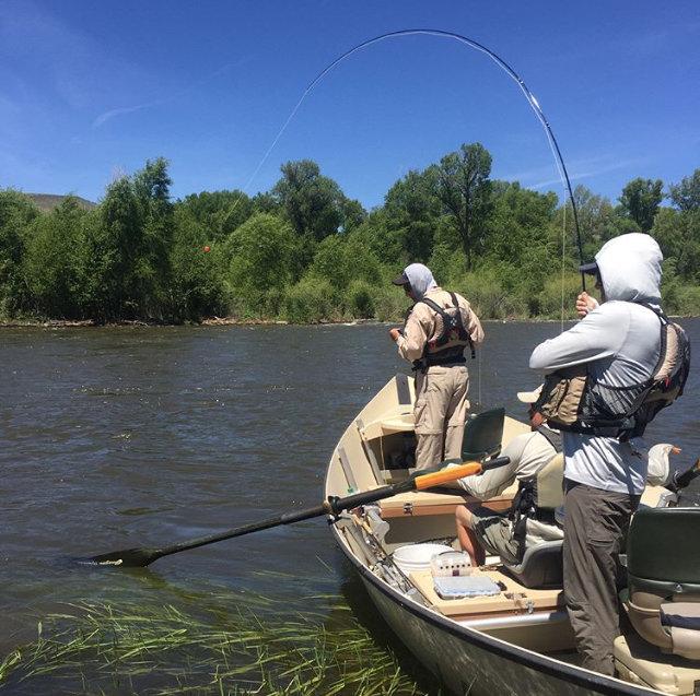 Gunnison River Half Day Float Trip