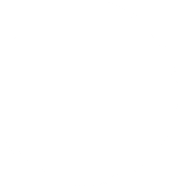 cercle_bullets_point.png