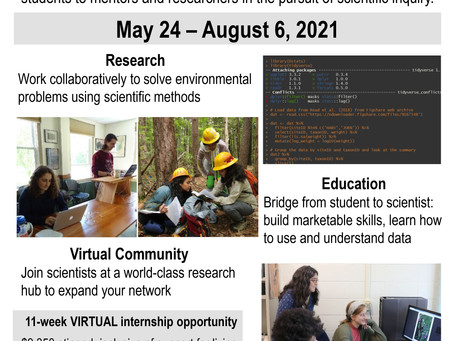 Paid Virtual Summer Research Opportunity