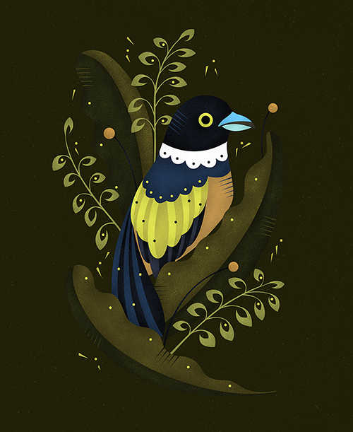TINY BIRD ILLUSTRATION