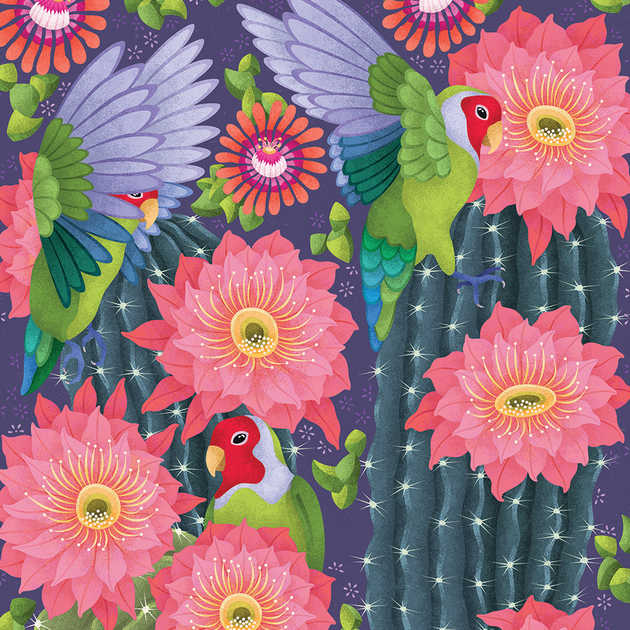 LOVEBIRDS IN ARIZONA ILLUSTRATION