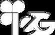 IEG_logo2019_blanc_transparence.png