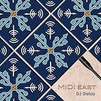 DJ Delay