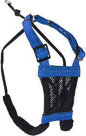 sporn harness.jpg