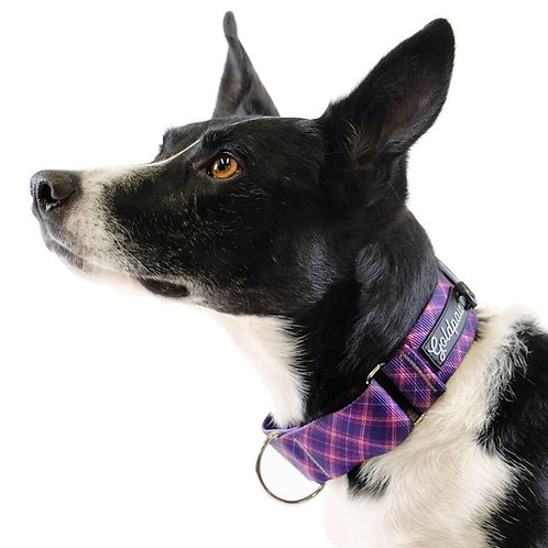 Martingale Collar - Mulberry Plaid