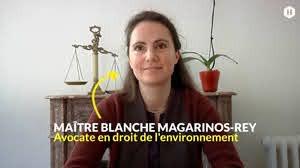 Linky: Maître Blanche Magarinos-Rey, Avocate en droit de l'environnement.