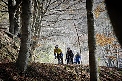 Cycling in Montseny