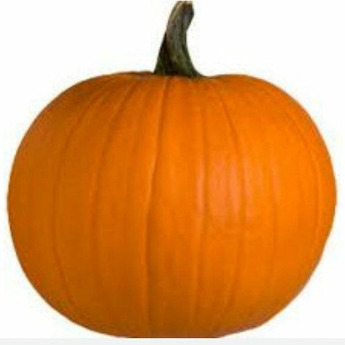 Pumpkin Body Lotion