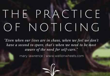 "The practice of ""Noticing"""