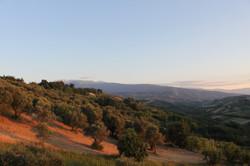View From Villa Leonardo