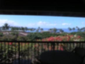 view+with+lanai+frame.jpg