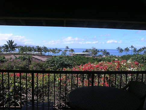 view+with+lanai+frame.jpg