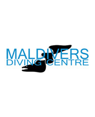 Drone-Dronare-Camilla-Dellion-Stockholm-Dronarfotograf-Maldivers.jpg