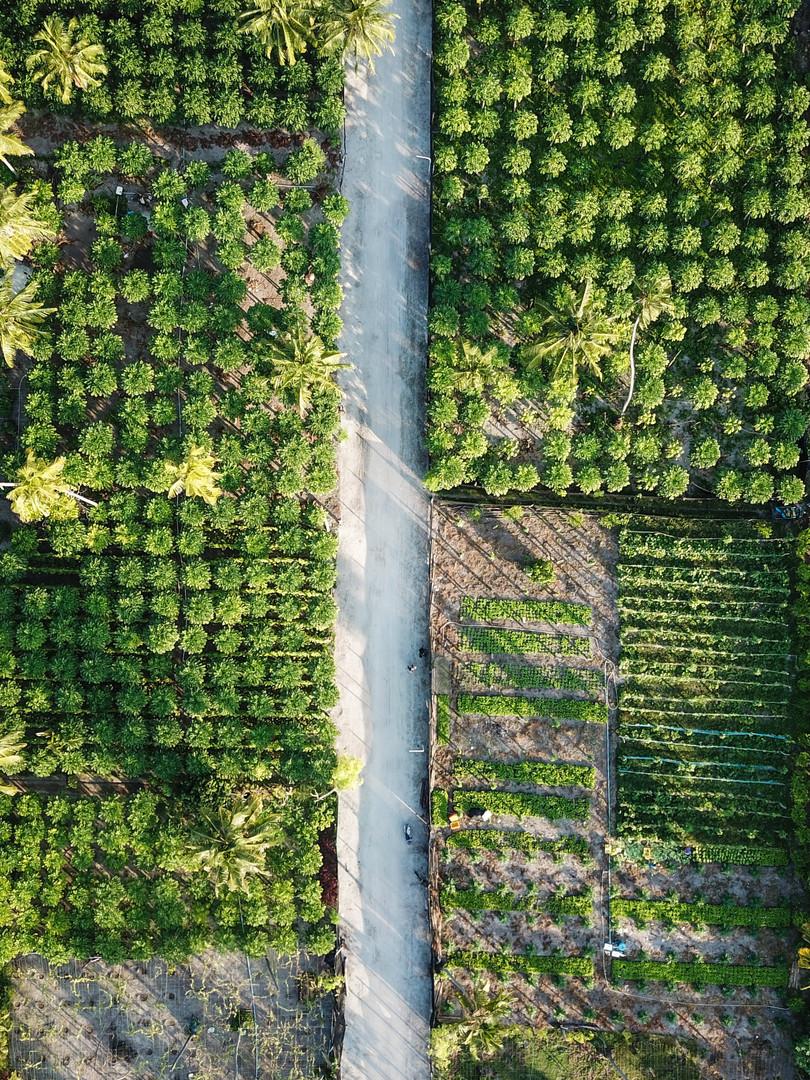 Camilla_Dellion_Drone_Maldives_0244.JPG