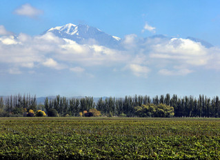 A Good Time To Visit Mendoza