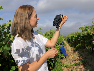 Women of Wine - South Africa