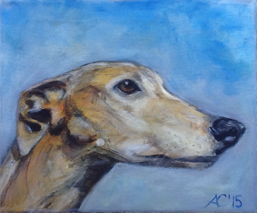 Thomas greyhound