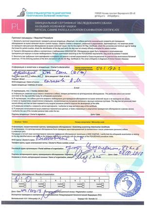 Адамант Дог Соня. Пателла тест 0/0