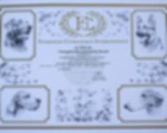 Адамант Дог Артемида - International Champiom