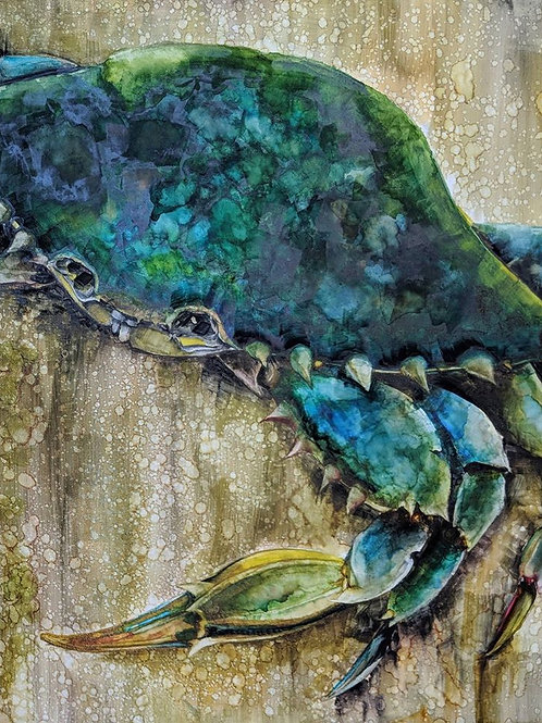 11 X 14  Blue Crab Special, matted