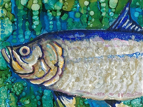 Tarpon I  11 X 14 canvas