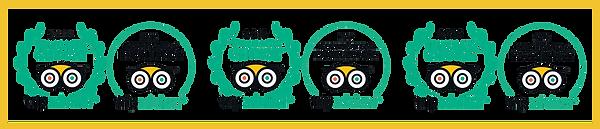 pngfind.com-tripadvisor-logo-png-3132864.png