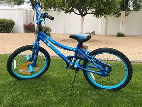blue and blue bike.jpg