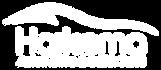 Harkema Auto Logo